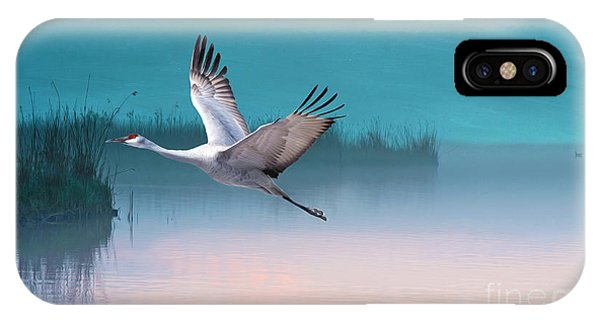 Sandhill Crane iPhone Case - Sandhill Crane And Misty Marshes by Laura D Young