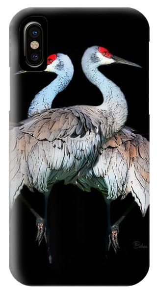 Sandhill Crane Mirror Image IPhone Case