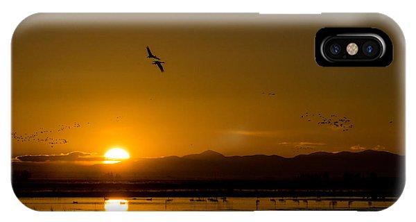 Sandhill Crane Sunrise IPhone Case