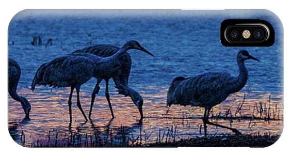 Sandhill Cranes At Twilight IPhone Case