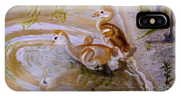 Sandhill Cranes Chicks First Bath IPhone Case