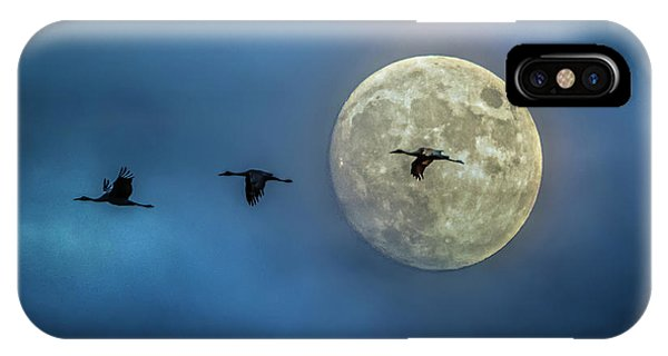 Sandhill Cranes With Full Moon IPhone Case