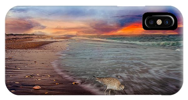 Sandpiper Sunrise IPhone Case