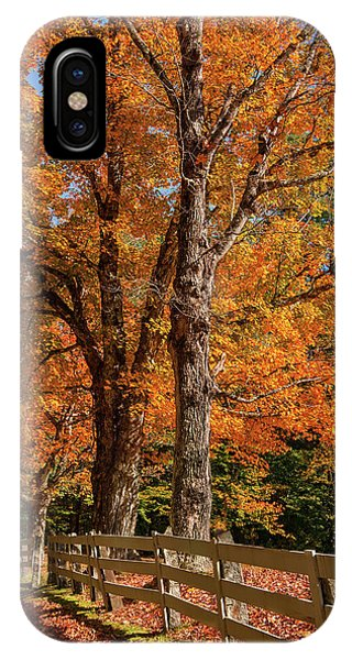 Sandwich Autumn IPhone Case