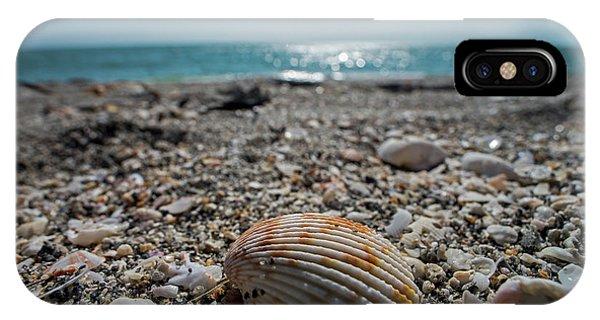 Sanibel Island Sea Shell Fort Myers Florida IPhone Case