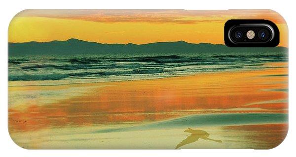 Santa Cruz Seagull IPhone Case