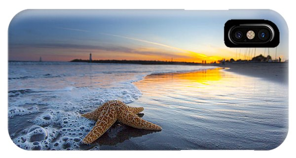 Santa Cruz Starfish IPhone Case