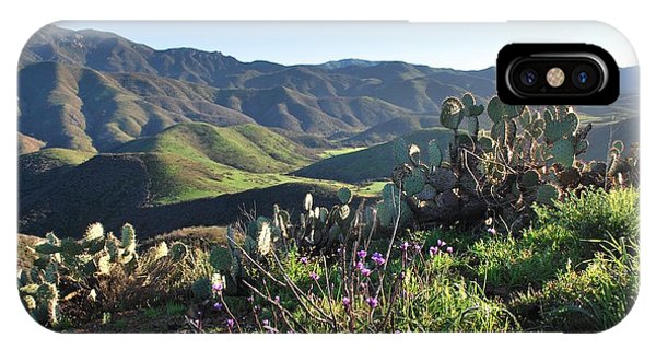 Santa Monica Mountains - Cactus Hillside View IPhone Case