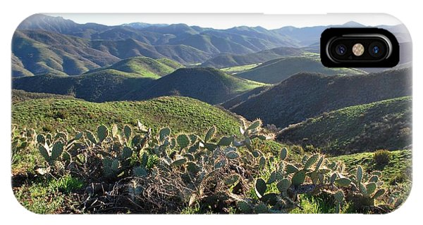 Santa Monica Mountains - Hills And Cactus IPhone Case