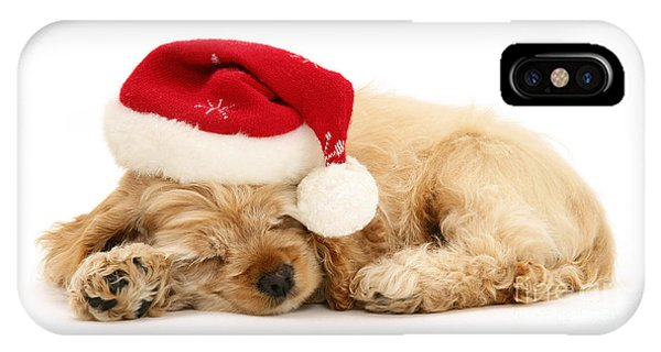 Santa's Sleepy Spaniel IPhone Case