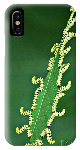 Sawflies IPhone Case