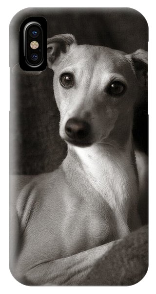 Say What Italian Greyhound IPhone Case