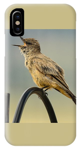 Say's Phoebe Singing IPhone Case