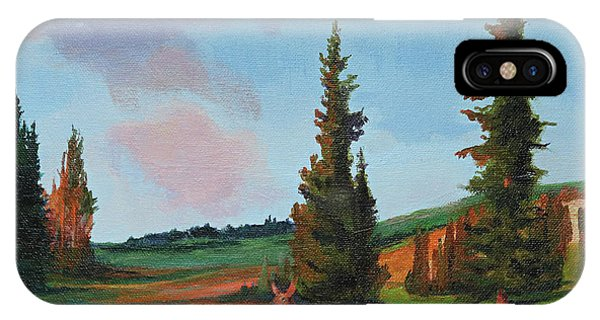 Scapegoat Summer Sunset IPhone Case