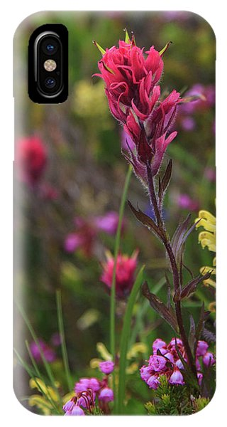 Scarlet Paintbrush IPhone Case