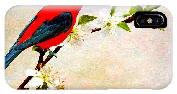 Scarlet iPhone Case - Scarlet Tanager by Laura D Young