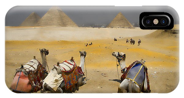 Scenic View Of The Giza Pyramids With Sitting Camels IPhone Case