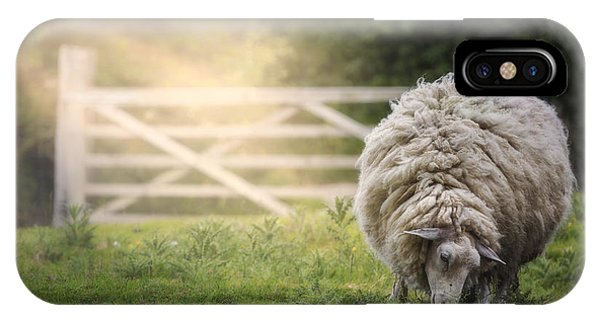 English Countryside iPhone Case - Sheep by Joana Kruse