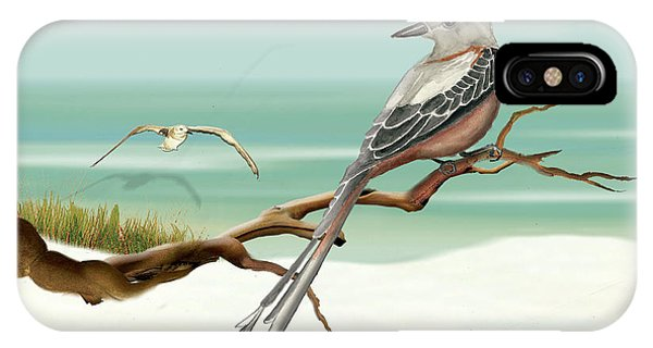 Scissor Tailed Flycatcher IPhone Case