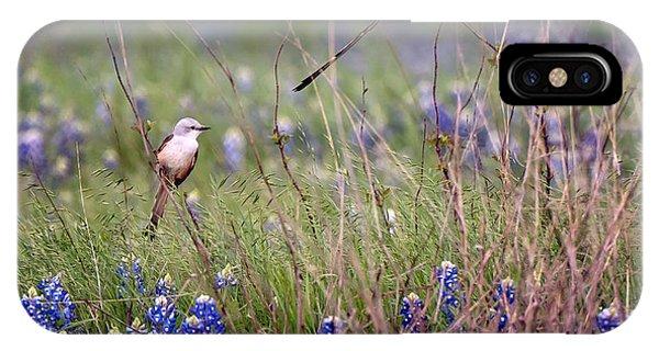 Scissor-tailed Flycatchers IPhone Case