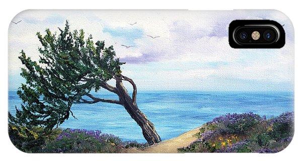 Half Moon Bay iPhone Case - Sea Coast At Half Moon Bay by Laura Iverson