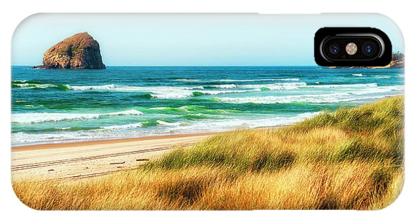 Sea-grass Dunes IPhone Case