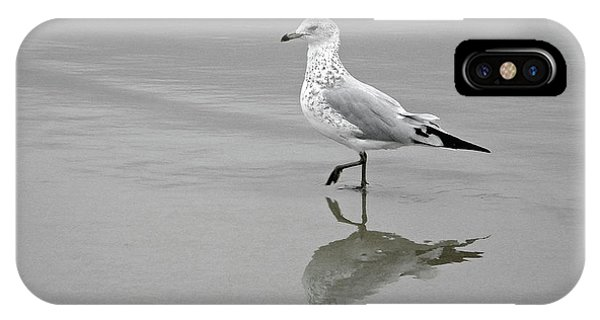 Sea Gull Walking In Surf IPhone Case