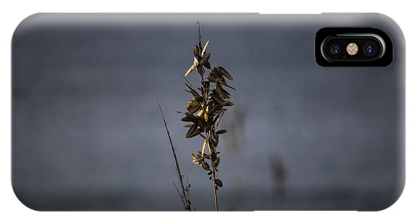 Sea Oat IPhone Case