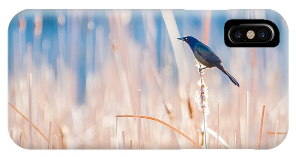 Sea Of Gold IPhone Case