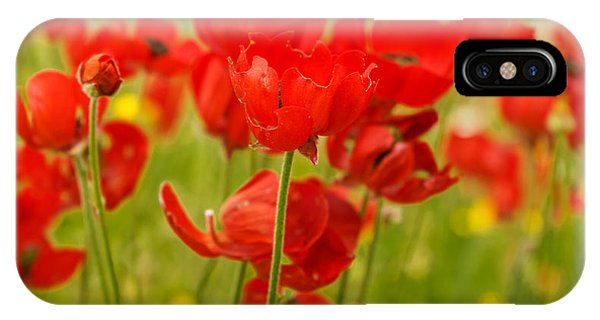 Sea Of Red Buttercups IPhone Case
