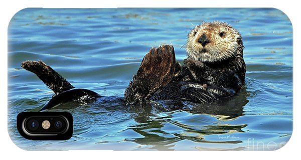 Sea Otter Primping IPhone Case