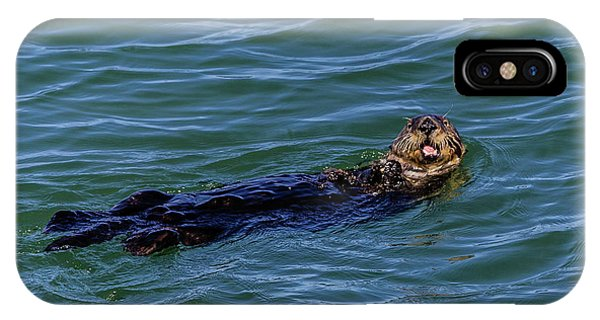 Sea Otter IPhone Case