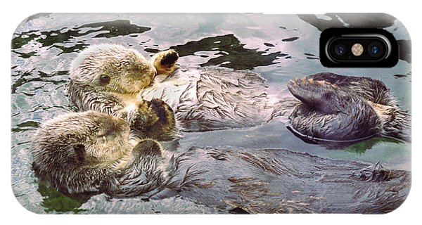 Sea Otters Holding Hands IPhone Case