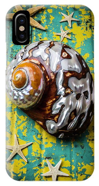 Shell Texture iPhone Case - Sea Snail Shell With Stars by Garry Gay