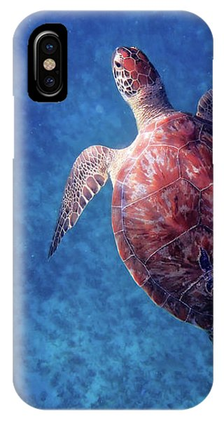 IPhone Case featuring the photograph Sea Turtle by Lars Lentz