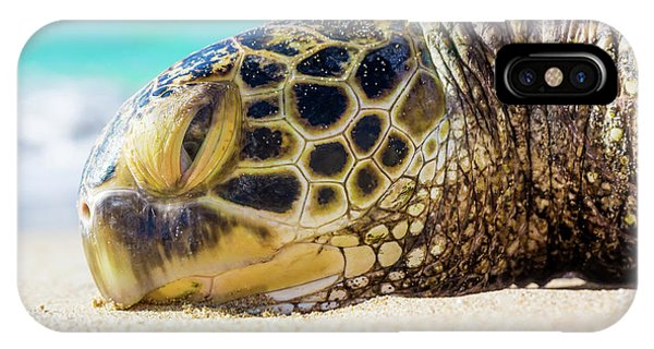 IPhone Case featuring the photograph Sea Turtle Resting At The Beach by Hans- Juergen Leschmann