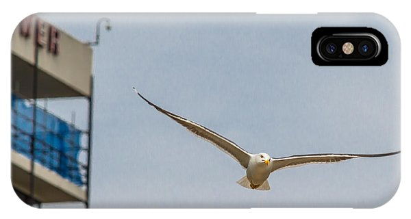 Seabird 02 IPhone Case