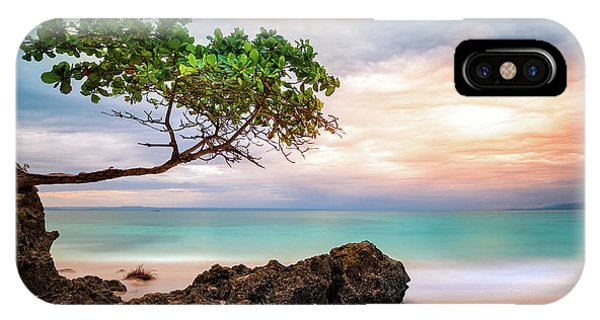 IPhone Case featuring the photograph Seagrape Tree by Mihai Andritoiu