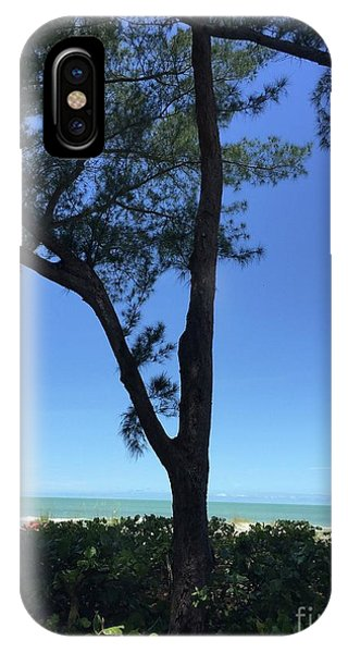Seagrapes And Pines IPhone Case