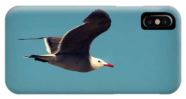 Seagull Aflight IPhone Case