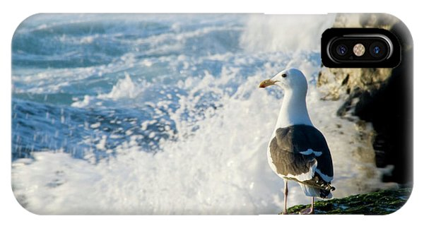 Seagull And The Sea IPhone Case