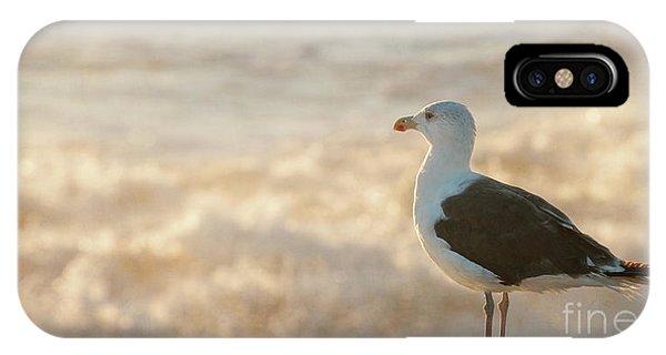 Seagull At Sunrise IPhone Case