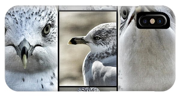 Seagull Collage IPhone Case