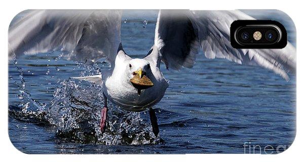 Seagull Flight IPhone Case