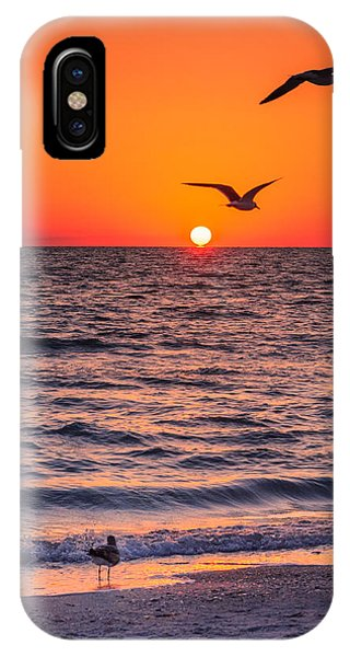 Seagull Hat-trick IPhone Case