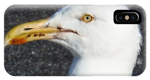 Seagull Head IPhone Case