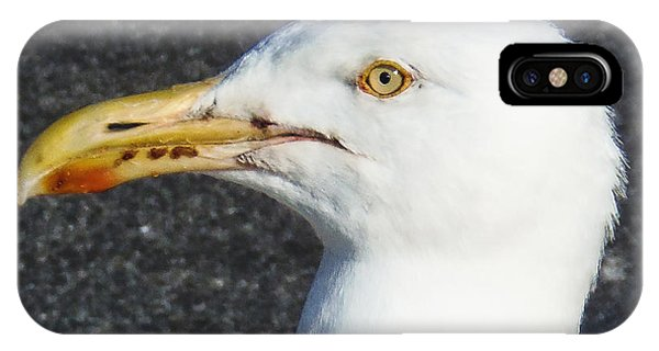 Seagull Head IPhone Case
