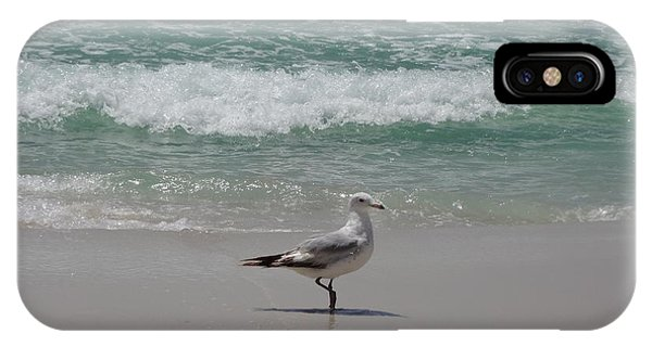iPhone Case - Seagull by Megan Cohen