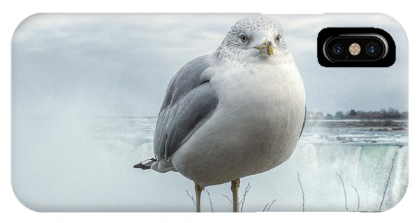 IPhone Case featuring the photograph Seagull Model by Garvin Hunter