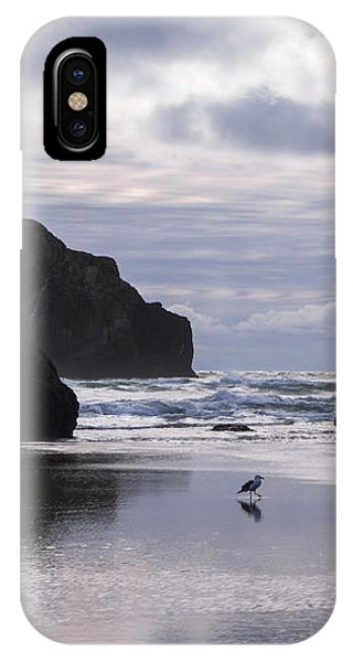 Seagull Reflections IPhone Case
